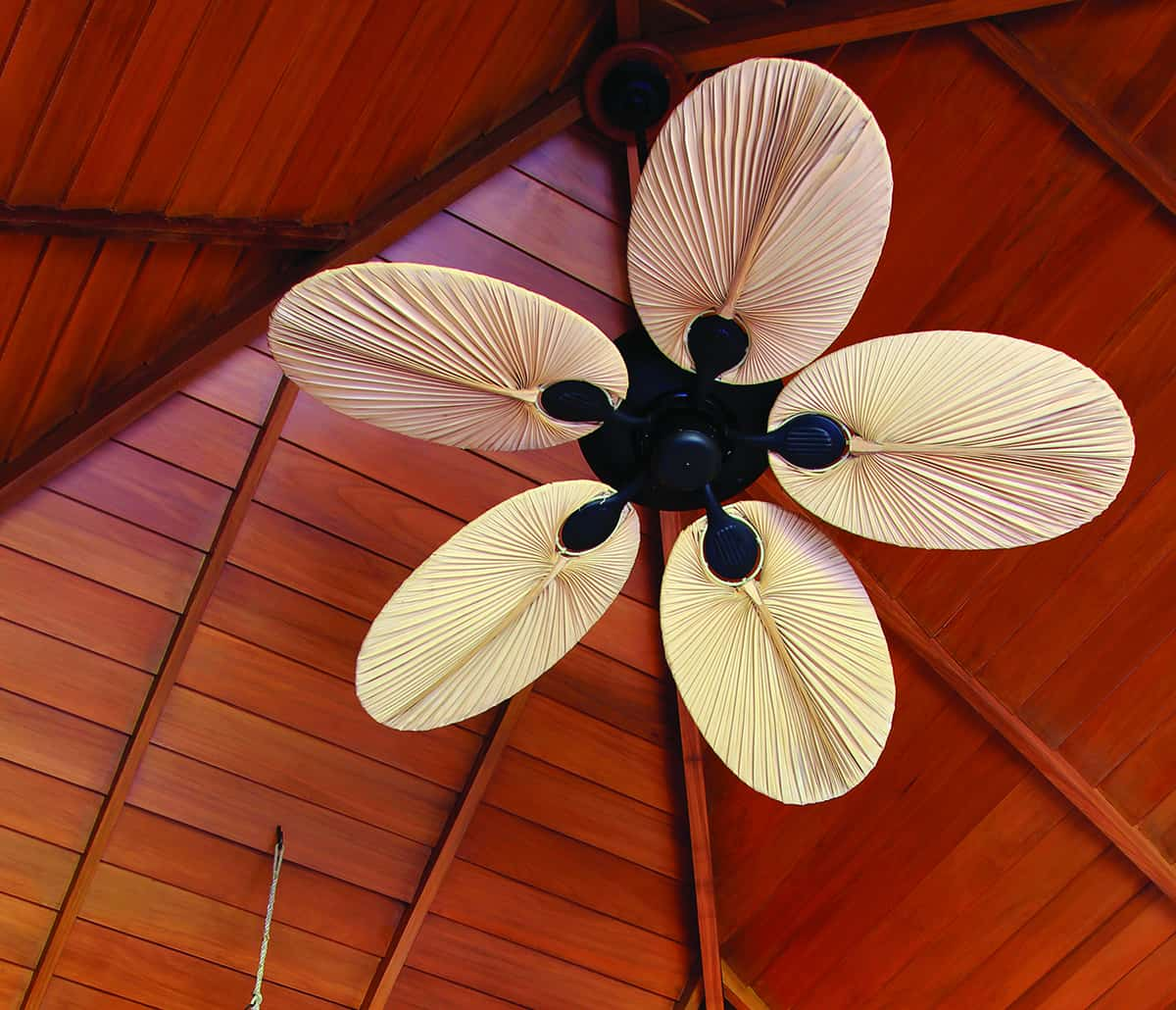 Asian Styled Room With Palm Leaf Shaped Ceiling Fan Blade Sanibel Air Electric Inc